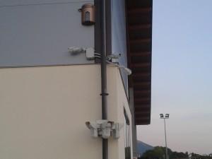 telecamere e perimetrali